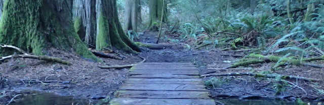 Woodland Trail: Click to enlarge