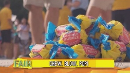 Bubblegum Blowing Contest: - Click to see video